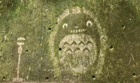 苔を削って描かれたジブリキャラクター(トトロ)2