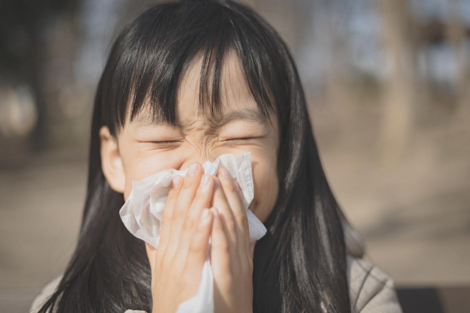 ヤクルト400は花粉症に効くのか