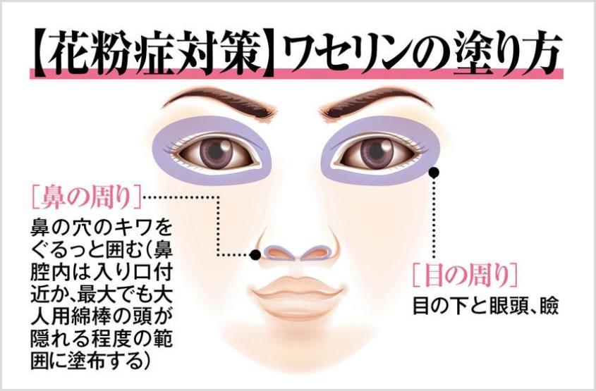 ワセリンの目や鼻周りの塗り方
