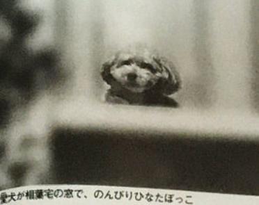 相葉雅紀の現在の彼女の写真
